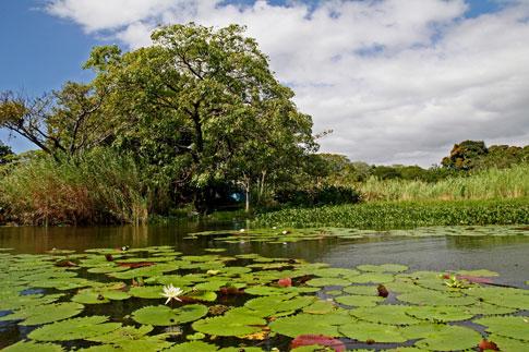 Las Isletas near Granada, Nicaragua