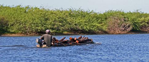 Juan Venado Nature Reserve, boat carrying wood