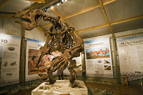 Natural History Museum in El Calafate