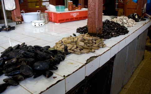 Oysters, Fish Market, Puerto Montt, Chile
